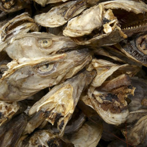 BUY DRY STOCK FISH CODS AND HEADS