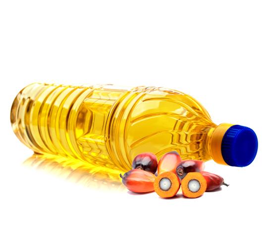 Wholesale RBD Palm Oil